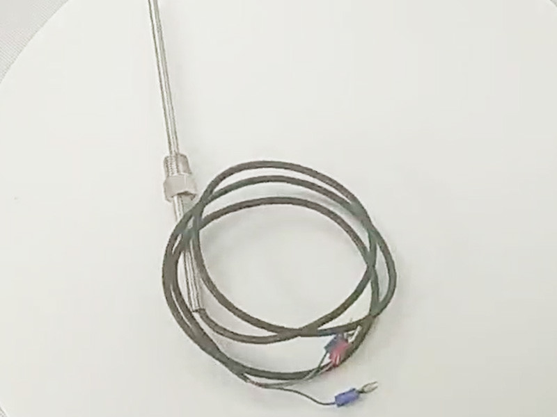 100mm Stainless Probe 1m Rubber Cable RTD